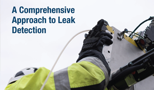 SPOT IMAGE (read more) - Whitepaper - leak detection